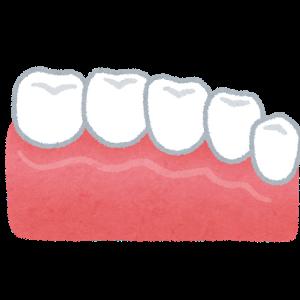 【悲報】人間の歯とかいう欠陥機能wwwwwwwwwwwwwww