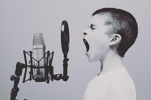microphone-1209816__340.jpg
