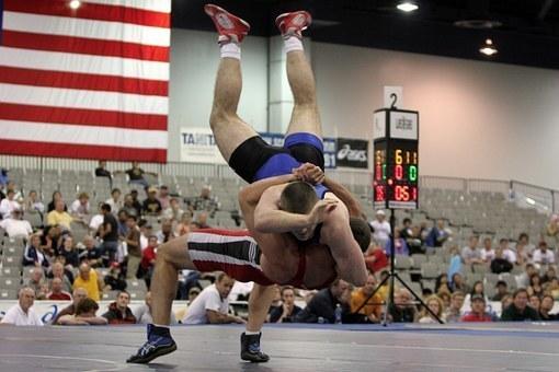 wrestlers-646535__340.jpg